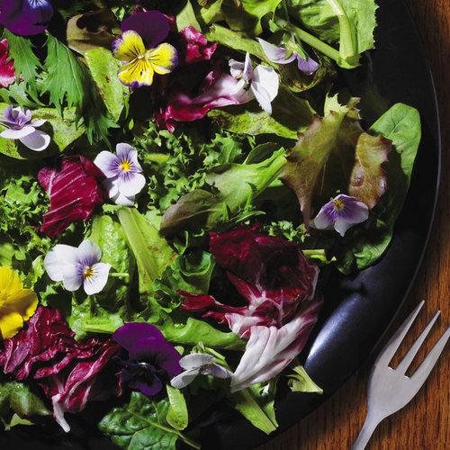 j & l salad seeds